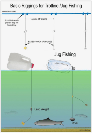 Fishing without a Pole